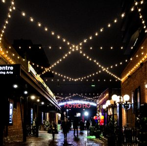 The Young Centre in Toronto's Distillery District is home to all types of theatre productions.